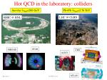 hot qcd in the laboratory colliders