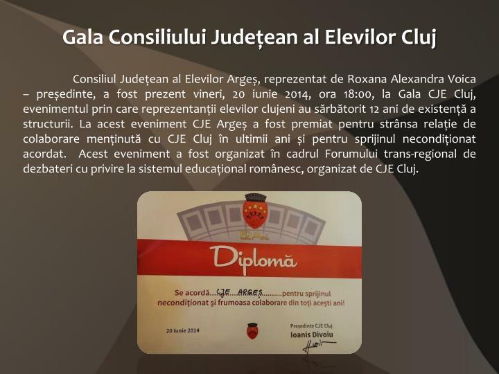 Gala Consiliului Județean al Elevilor Cluj