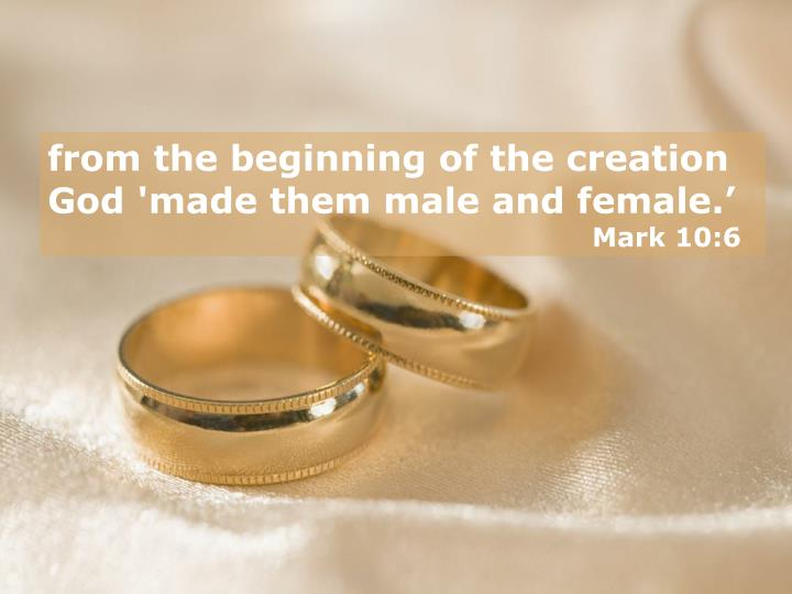 from the beginning of the creation God 'made them male and female.'