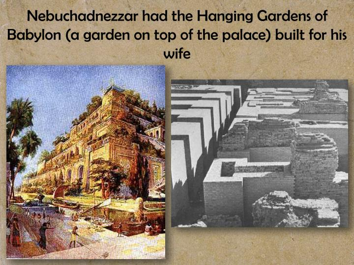 Nebuchadnezzar had the Hanging Gardens of Babylon (a garden on top of the palace) built for his wife
