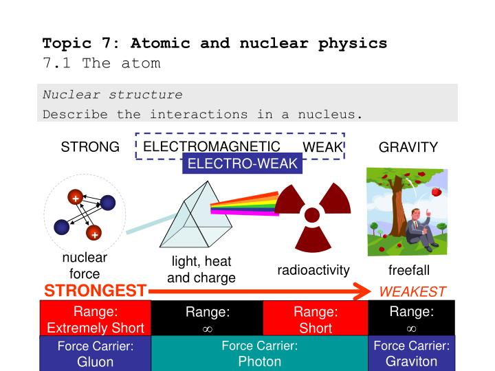 nuclear physics and a k jain Physics department,iit roorkee involves msc,m tech,postgraduate programs and reserach activities in nuclear and particle physics,applied physics,condensed matter,atomic and molecular collision,etc.