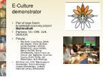 e culture demonstrator