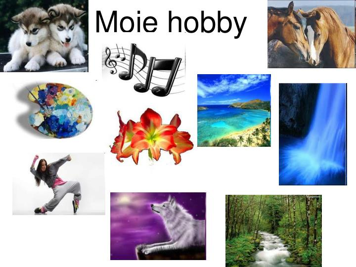 PPT - Moje hobby PowerPoint Presentation, free download - ID:5286999