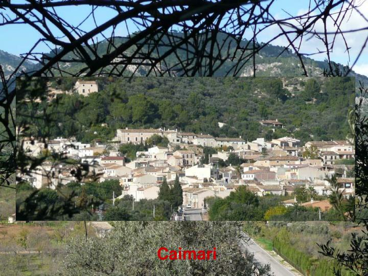 Caimari
