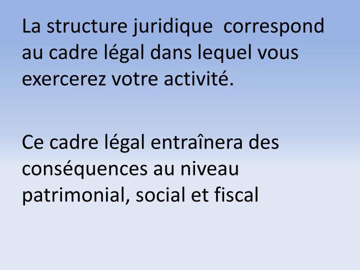 La structure juridique  correspond au cadre légal dans lequel vous exercerez votre activité.