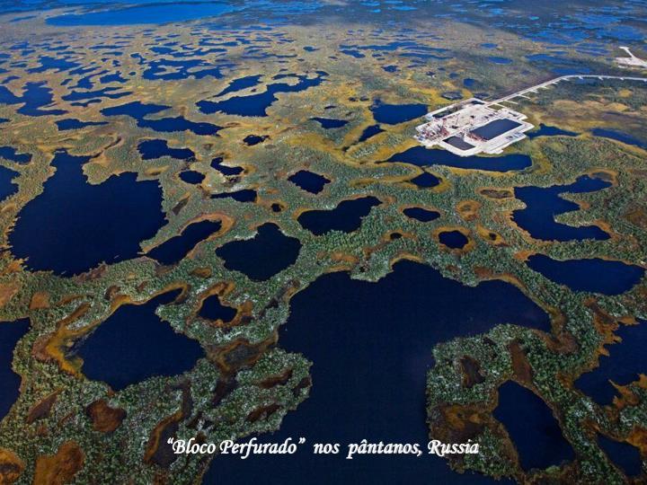 """""""Bloco Perfurado""""  nos  pântanos, Russia"""