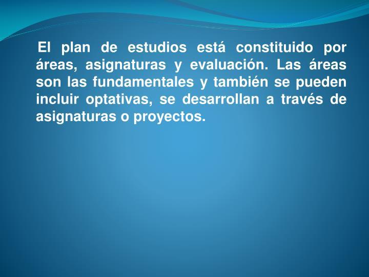 El plan de estudios está constituido por áreas, asignaturas y evaluación. Las áreas son las fundamentales y también se pueden incluir optativas, se desarrollan a través de asignaturas o proyectos.