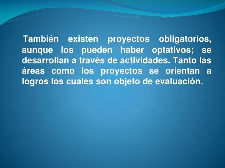 También existen proyectos obligatorios, aunque los pueden haber optativos; se desarrollan a través de actividades. Tanto las áreas como los proyectos se orientan a logros los cuales son objeto de evaluación.