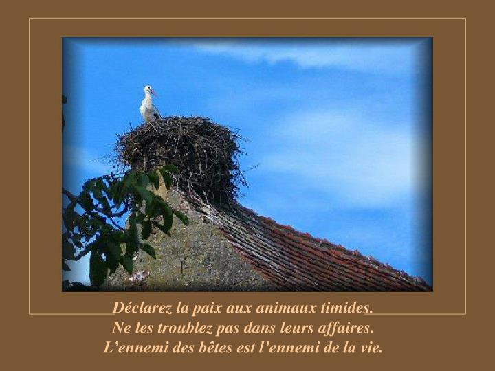 Déclarez la paix aux animaux timides.                                        Ne les troublez pas dans leurs affaires.                            L'ennemi des bêtes est l'ennemi de la vie.