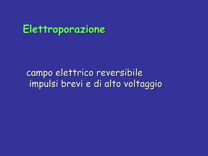 Elettroporazione