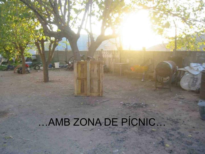 …AMB ZONA DE P