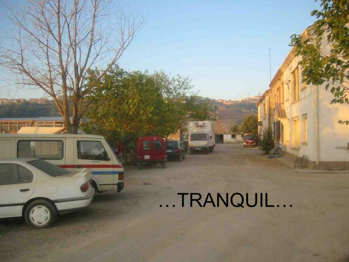 …TRANQUIL…