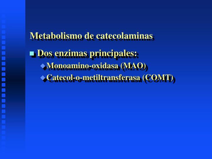 Qué son Acelerar metabolismo ?