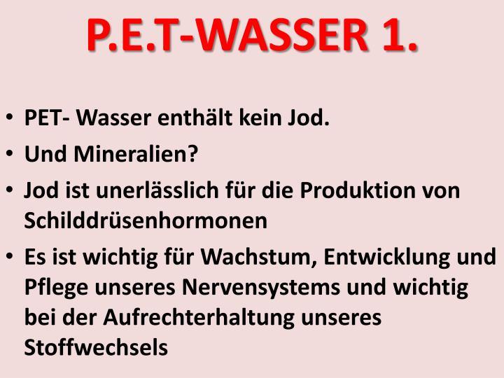 P.E.T-WASSER 1.