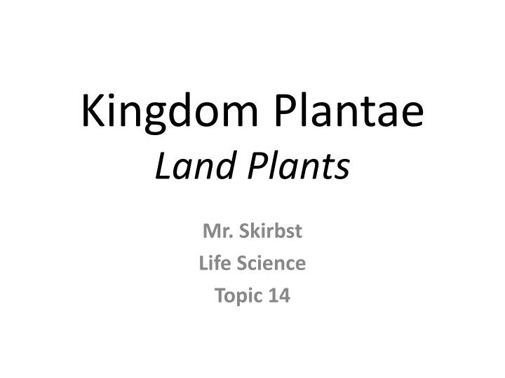 kingdom plantae land plants n.