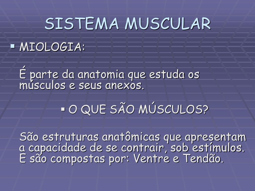 Ppt Sistema Músculo Esquelético Powerpoint Presentation