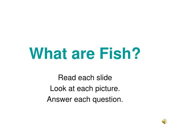 what are fish n.