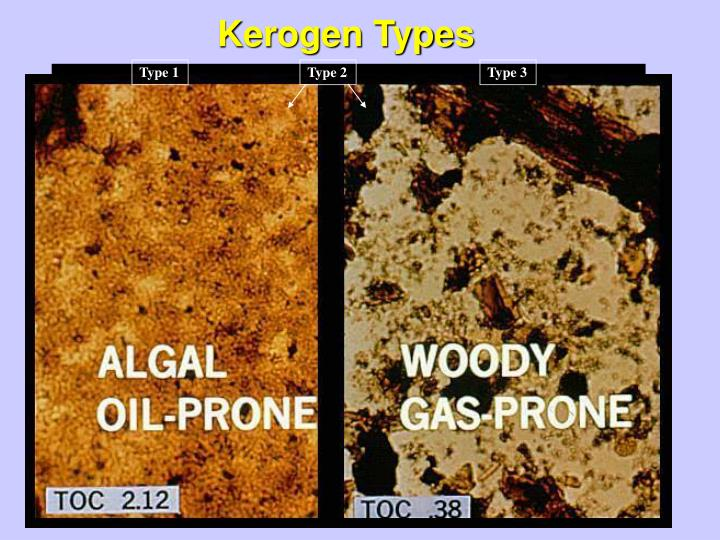 Kerogen Types