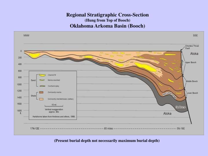 Regional Stratigraphic Cross-Section