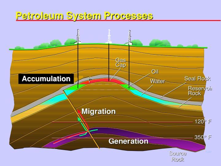 Petroleum System Processes