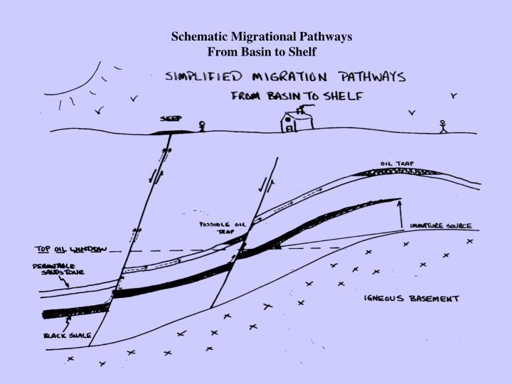 Schematic Migrational Pathways