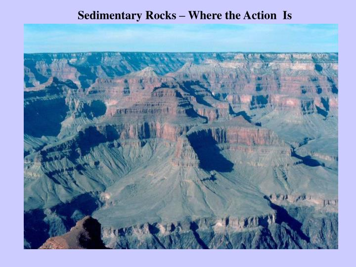 Sedimentary Rocks – Where the Action  Is