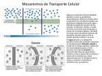 mecanismos de transporte celular3