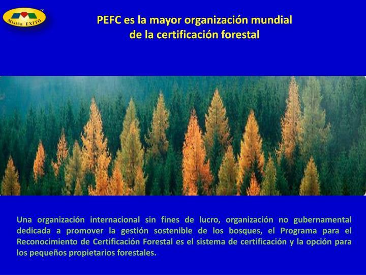 PEFC es la mayor organización mundial