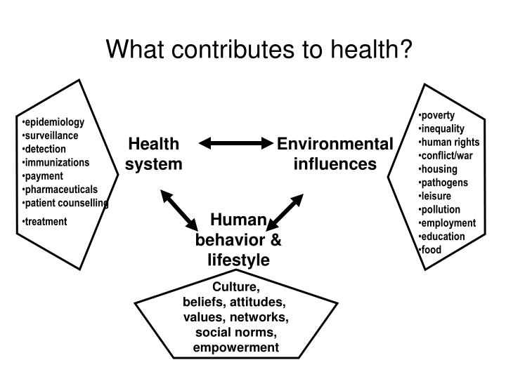 What contributes to health?