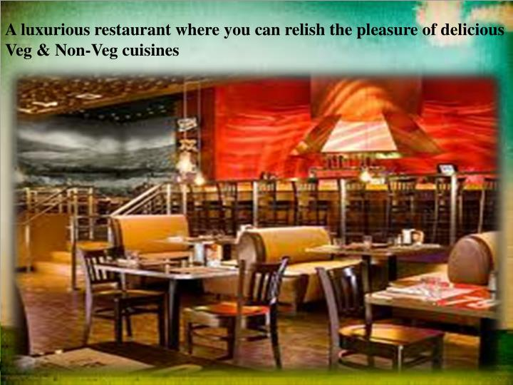 A luxurious restaurant where you can relish the pleasure of delicious Veg & Non-Veg cuisines