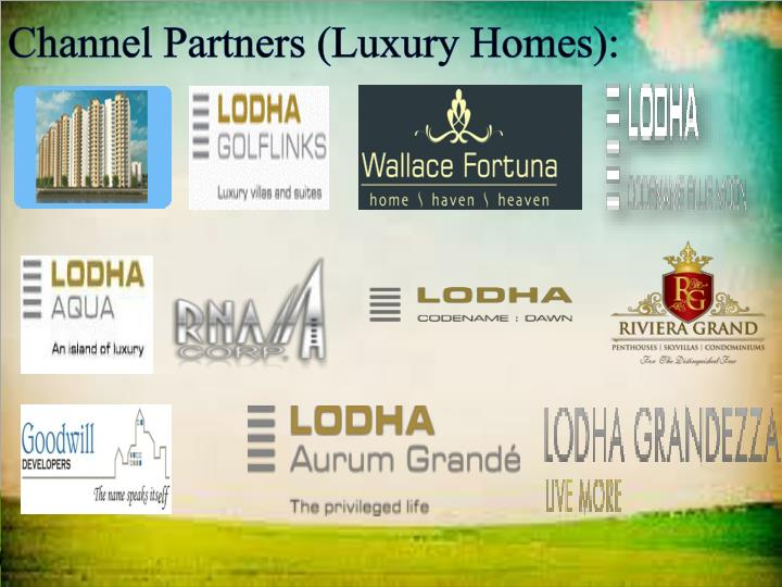 Channel Partners (Luxury Homes):