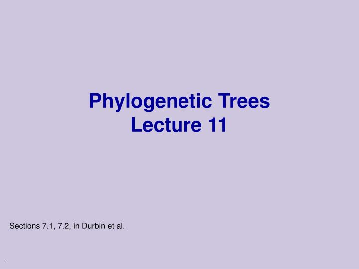 Phylogenetic trees lecture 11