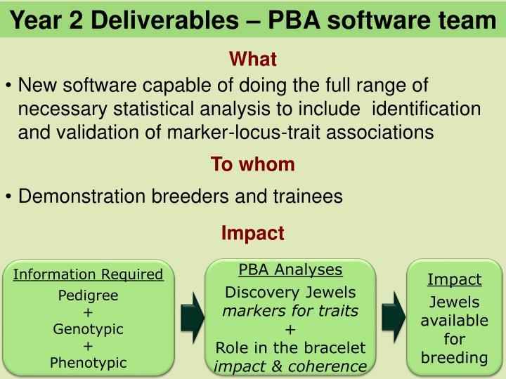 Year 2 Deliverables – PBA software team