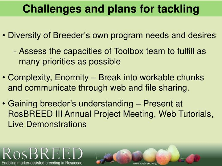 Challenges and plans for tackling
