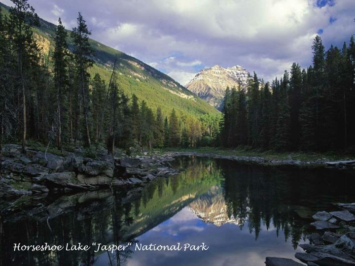"Horseshoe Lake ""Jasper"" National Park"
