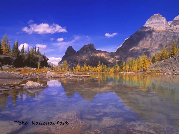 """""""Yoho"""" National Park"""