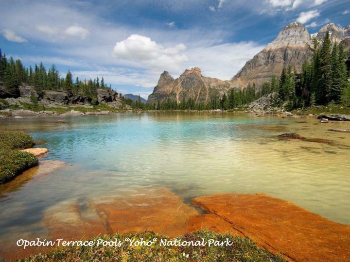 "Opabin Terrace Pools ""Yoho"" National Park"