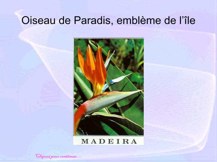 Oiseau de paradis embl me de l le