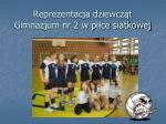 reprezentacja dziewcz t gimnazjum nr 2 w pi ce siatkowej
