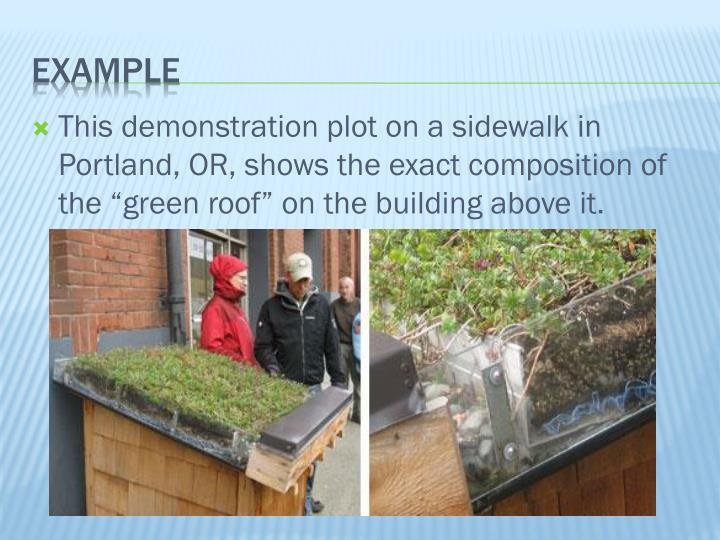 "This demonstration plot on a sidewalk in Portland, OR, shows the exact composition of the ""green roof"" on the building above it."