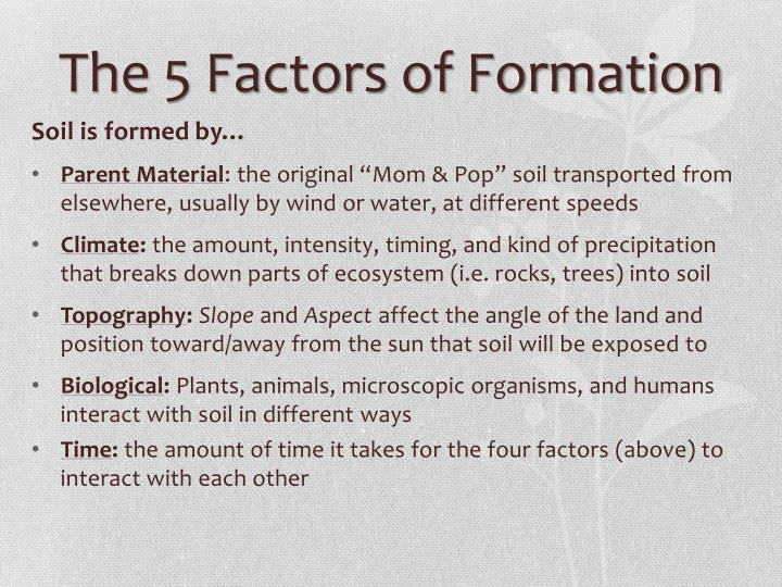 the soil formation factors engineering essay The idea is that if all five of the soil-forming factors are the same, then the soil will be the same the technical term used for soil formation is pedogenesis.