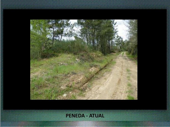 PENEDA - ATUAL