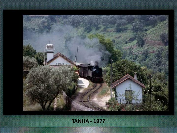 TANHA - 1977