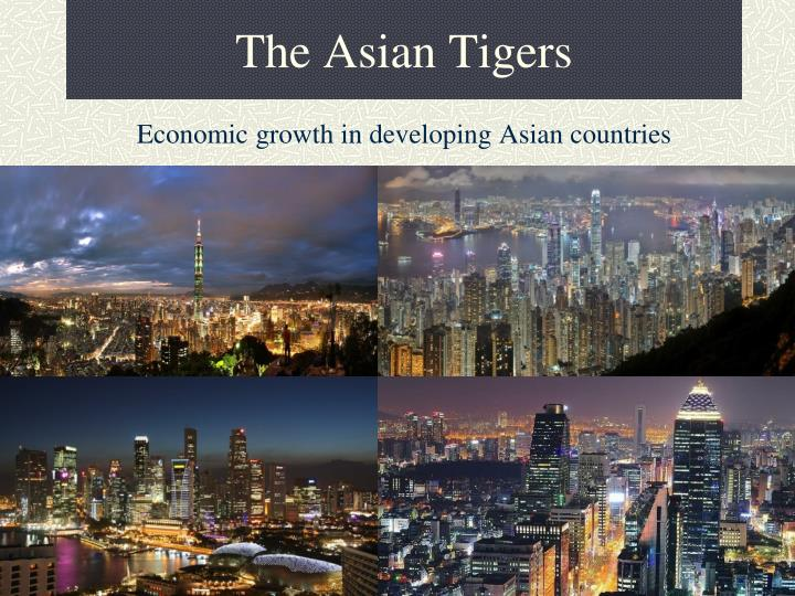 the asian tigers n.
