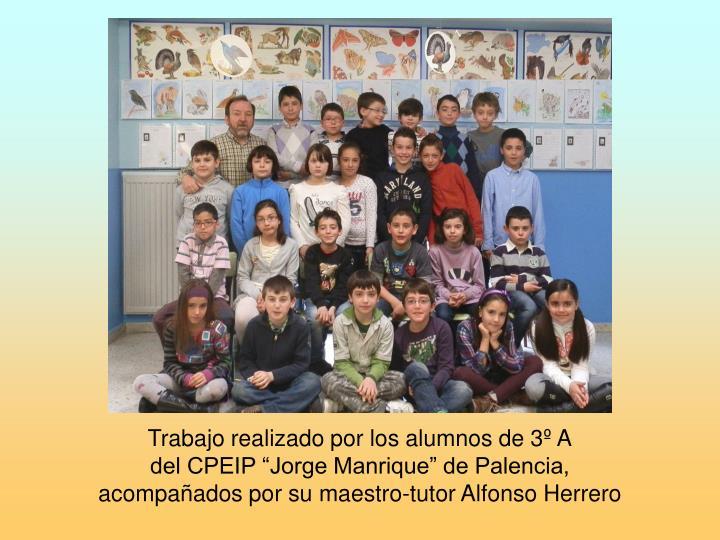 Trabajo realizado por los alumnos de 3º A
