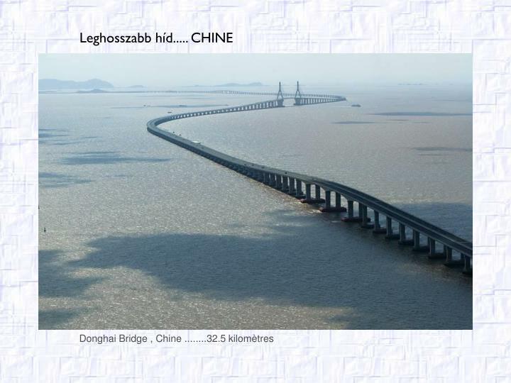 Donghai Bridge , Chin
