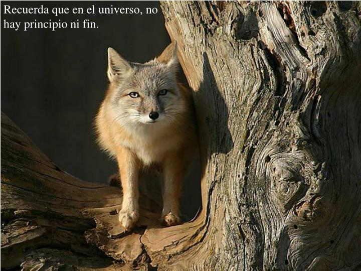 Recuerda que en el universo, no hay principio ni fin.