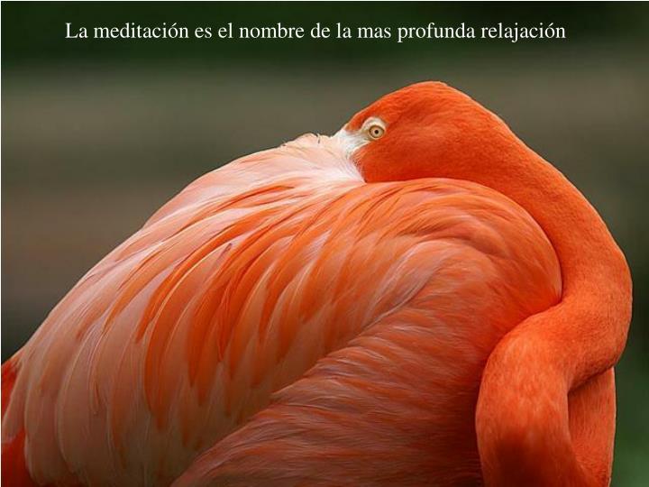 La meditación es el nombre de la mas profunda relajación