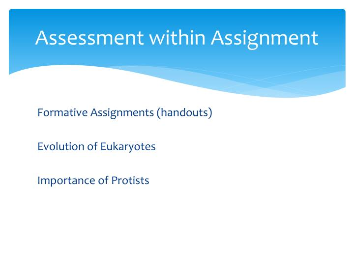 Assessment within Assignment