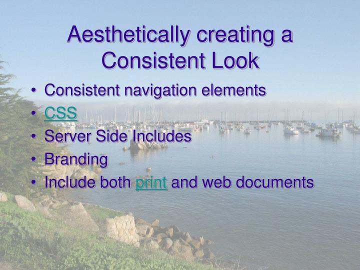 Aesthetically creating a Consistent Look